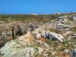 Ocean cliffs near Cabo Carvoeiro in daylight, Peniche