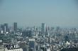 高台からの都市の展望コンクリートジャングル