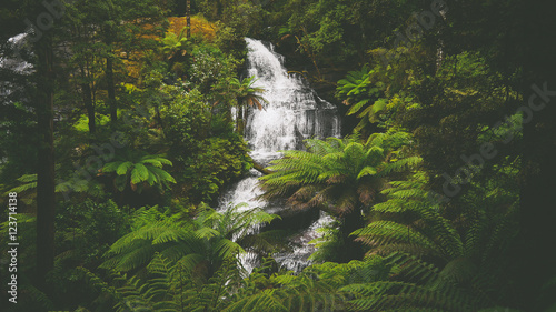 Tuinposter Jungle Wasserfall Triplet Falls im Regenwald an der Great Ocean Road in Australien