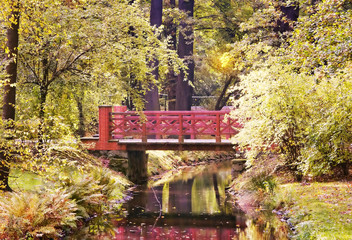 Fototapeta Drzewa Wooden bridge in the autumn park