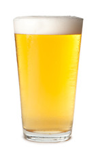 Foam Head Pint Of Light Lager Pilsner Beer Isolated On White Background For Use Alone Or As A Design Element