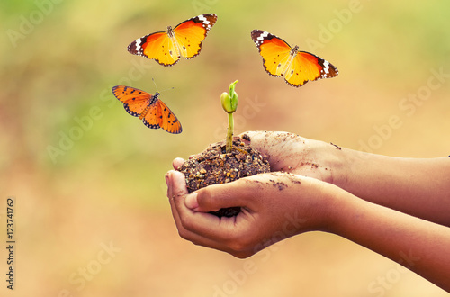 Foto auf Gartenposter Schmetterlinge im Grunge Hand of boy and young plant with flying Common Tiger butterfly (Danaus genutia) on pink bokeh background,touch -up in new hope of green earth concept,processed in vintage style.
