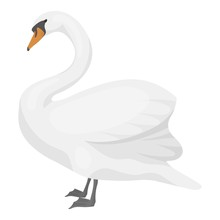 Swan Icon In Cartoon Style Iso...