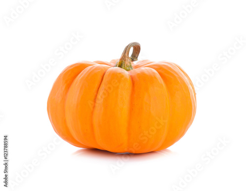 Studio shot of a nice ornamental pumpkin on pure white backgroun