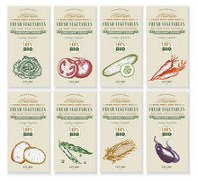 Vegetable Seeds Packets Template