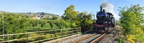 Treno a vapore tra i campi coltivati Fototapet