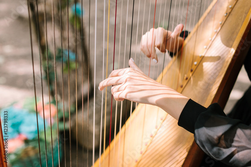 Photo hands of the woman playing a harp. symphonic orchestra. harpist
