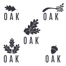 Set Of Logos On An Oak Tree With Leaves And Acorns.Vector Illust