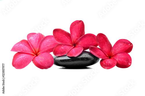 Fototapeta Zen stones with frangipani flower obraz na płótnie