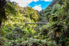Wooden Bridge On Forgotten World Highway, New Zealand