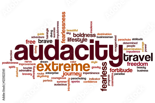 Audacity word cloud Canvas Print