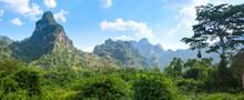 Rainforest Of Khao Sok Nationa...