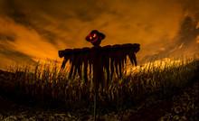 Espantapajaros En Halloween