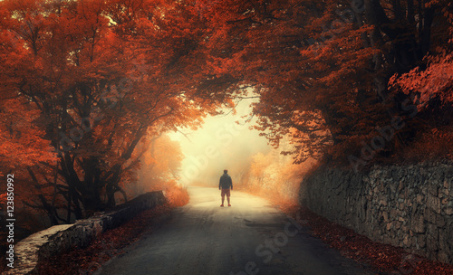 Mystical autumn red forest with silhouette of a man on the road in fog. Fall woods. Landscape with man, trees, road, orange and red foliage, and yellow fog. Travel. Autumn background. Magical forest