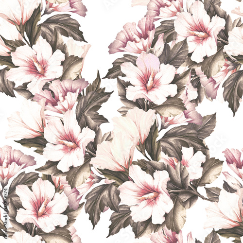 Seamless pattern with hibiscus. Hand draw watercolor illustration. - 123856574