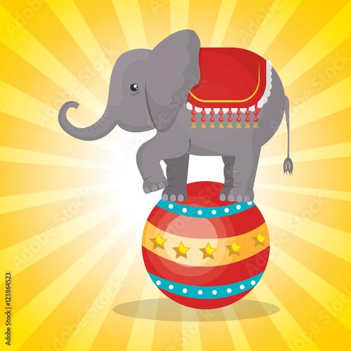 Fotografia, Obraz  circus elephant festival show over yellow background