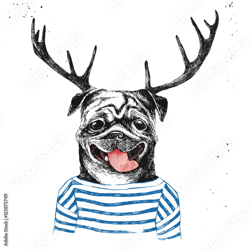 Hand drawn dressed up pug in hipster style
