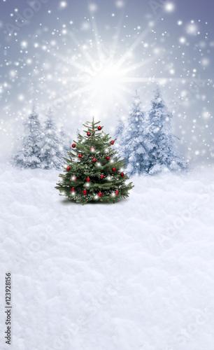 Spoed Fotobehang Lichtblauw Christbaum im Schnee