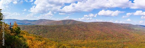 Fotografie, Obraz  Panoramic view from Tibbet Knob, West Virginia