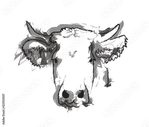 Canvas Tête de vache