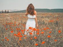 Beautiful Young Woman In The Poppy Field