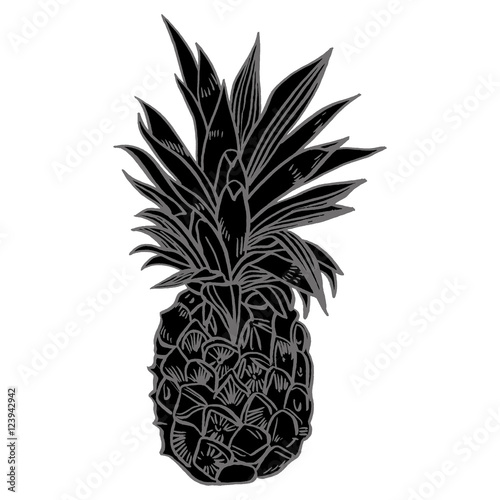 Fototapety, obrazy: Hand drawn set illustrations of ripe pineapples. Exotic tropical fruit vector drawings isolated on white background.