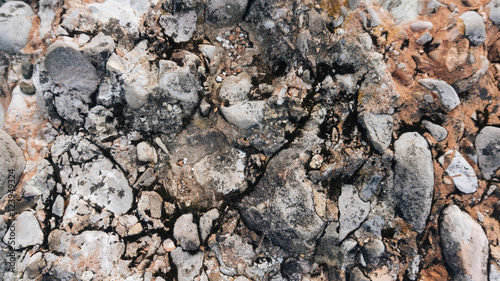 Fotografija  Myslachowice Conglomerate stone usable as texture or background