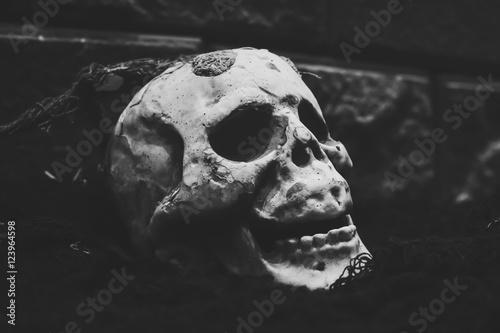 Printed kitchen splashbacks Watercolor skull Cranium for hollowed