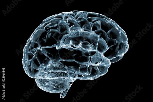 Fotografie, Obraz  cerebro cristal