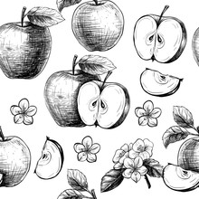 Apples  And Flowers. Vector Se...