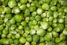 A Whole Page Of Brussel Sprout...