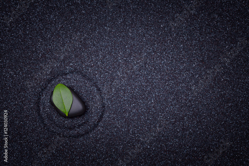 Deurstickers Stenen in het Zand Simple green leaf in a black zen garden