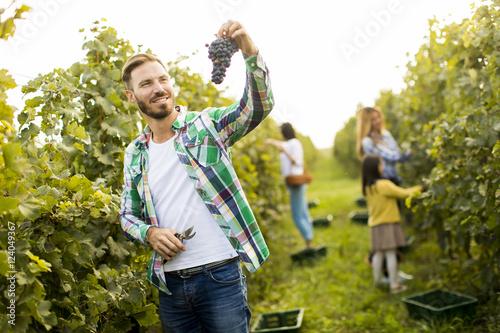 Fotografía  Young man in the vineyard