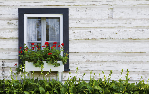 Old Log House With Flowers In A Window Box; Iron Hill, Quebec, Canada