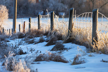 Snow And A Frosty Barbed Wire ...