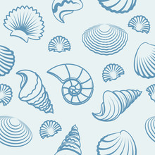 Vector Seashells Pattern. Sea Shell Hand Drawn Background