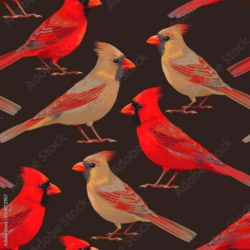 Leinwand Poster Seamless nothern cardinals