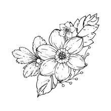 Hand Drawn Ink Floral Ornament With Flowers Narcissus And Leaves. Vector Eps 10