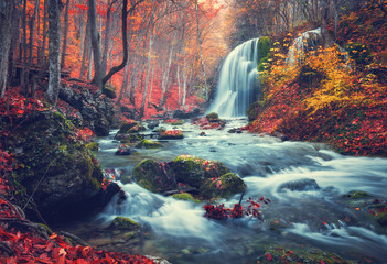 Fototapeta Vintage Autumn forest with waterfall at mountain river at sunset. Colorful landscape with trees, stones, waterfall and vibrant red and orange foliage. Nature background. Fall woods. Vintage toning