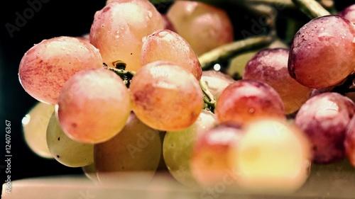 Obraz na plátně  Mix color grape bunch, bleached colors, dark background