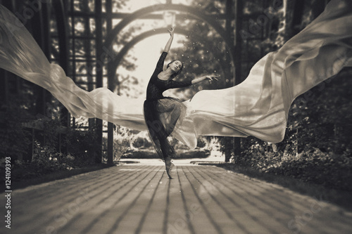 Fotografie, Tablou  Ballerina on the streets