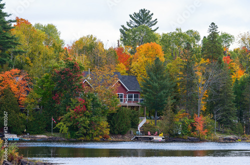 Photo  Cottage between colorful trees