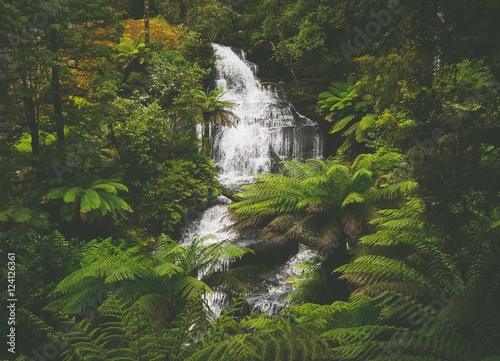 Tuinposter Jungle Triplet Falls im Great Otway National Park in Victoria, Australien