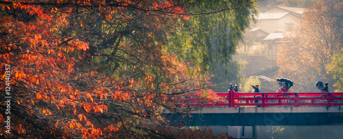 Photo Stands Japan autumn morning in takayama