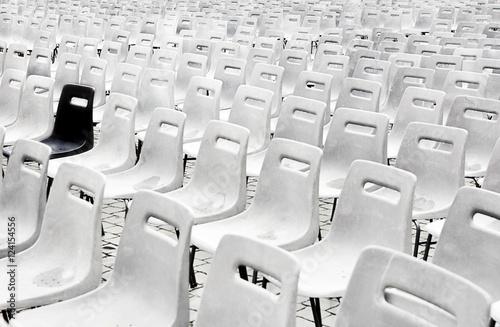 Fotografie, Obraz  Fila di sedie vuote bianche, una sola nera