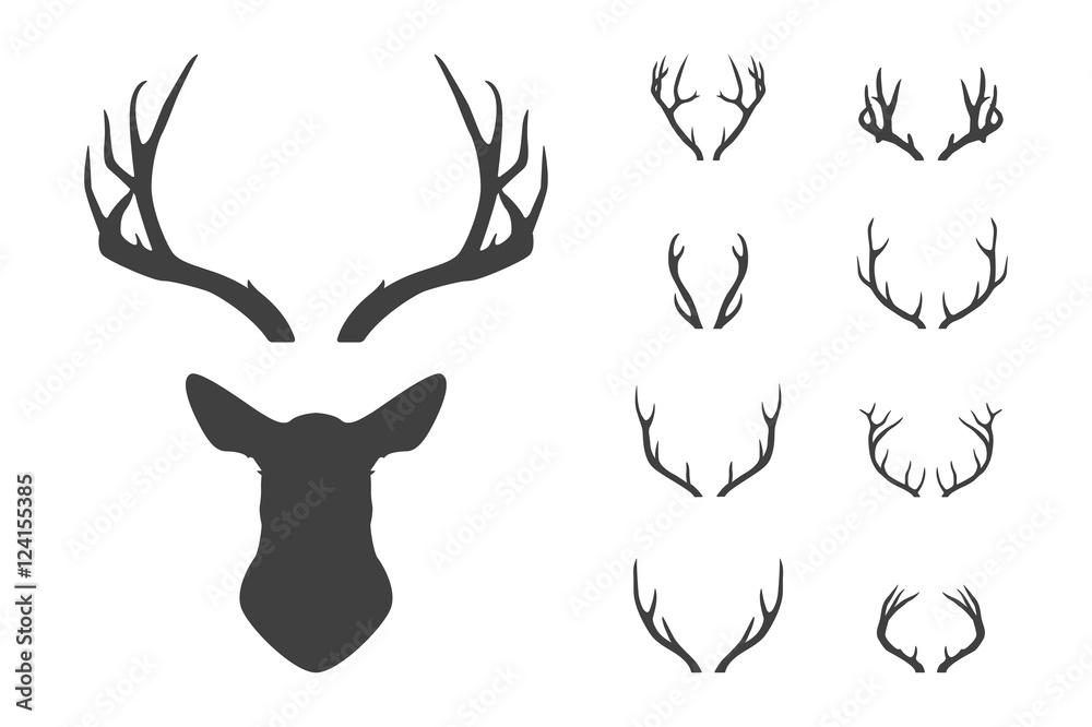 Fototapeta Deer s head and antlers set.