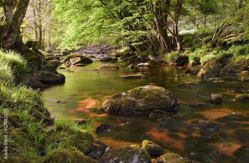 Foto auf Gartenposter Fluss Beautiful glencree river flowing through magical landscape