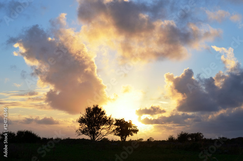 Trees silhouetted against setting sun in the countryside in county Galway,Ireland Canvas Print