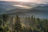 Fototapeta  - Świt w górach, Beskidy we mgle. Widok ze szczytu Gorca w kierunku południowo-wschodnim na Gorce i Beskid Sądecki