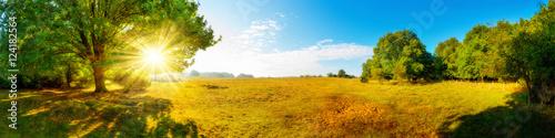 Canvas Prints Honey Landschaft im Herbst, Panorama einer vom Wald umgebenen Wiese mit Sonne